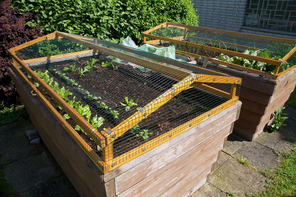Hochbeet für einen barrierefreien Garten von hochbeet.de